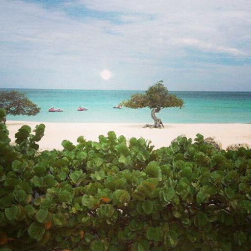 Aruba: una isla Feliz