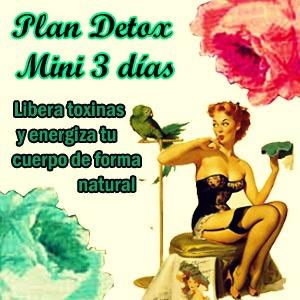 Plan DETOX MINI 3 Días