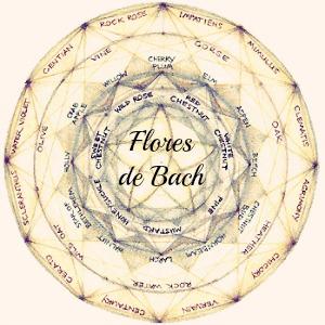 Mercurio retrogrado y Flores de Bach